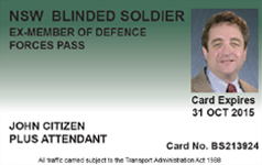 blinded soldier pass